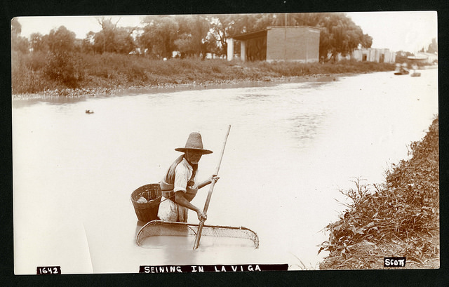 1642. Seining in La Viga, near city of Mexico, 1890-1910, SIA2014-03153.