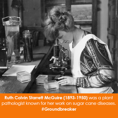 Ruth Colvin Starrett McGuire (1893-1950) was a plant pathologist known for her work on sugar cane diseases.