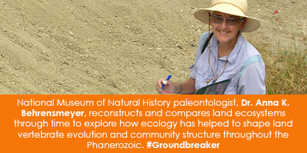 National Museum of Natural History paleontologist, Dr. Anna K. Behrensmeyer, reconstructs and compares land ecosystems through time to explore how ecology has helped to shape land vertebrate evolution and community structure throughout the Phanerozoic. #Groundbreaker