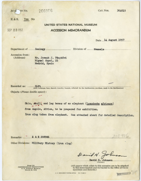 United States National Museum, Accession memorandum, Fénykövi Elephant (Accession 208986), August 14, 1957, Manuscript, Smithsonian Institution Archives, Record Unit 305, Box 1102, Accession 208986.