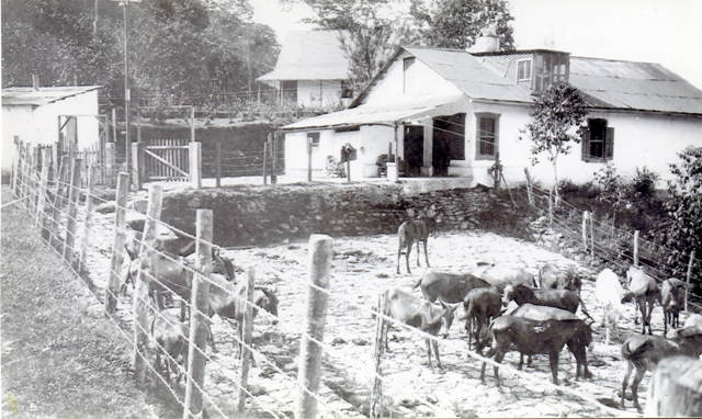 Hacienda Cincinnati plantation store at middle right, stone-paved corral for temporary holding of mules and horses in foreground, and La Casa Grande in background center.
