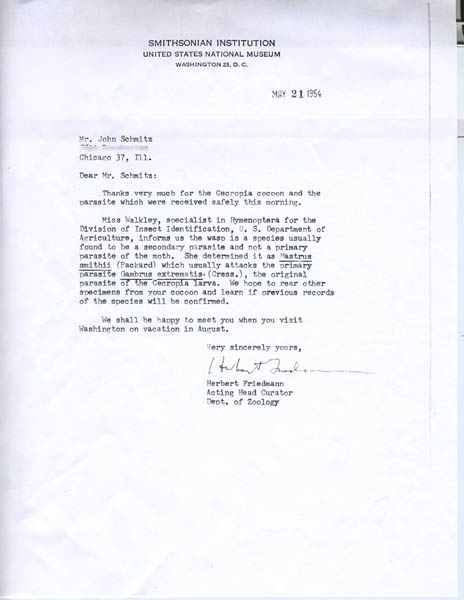 1954 letter from Herbert Friedmann, U.S. National Museum (now the National Museum of Natural History), to John Schmitz regarding his Cercropia cocoon and parasite specimens.
