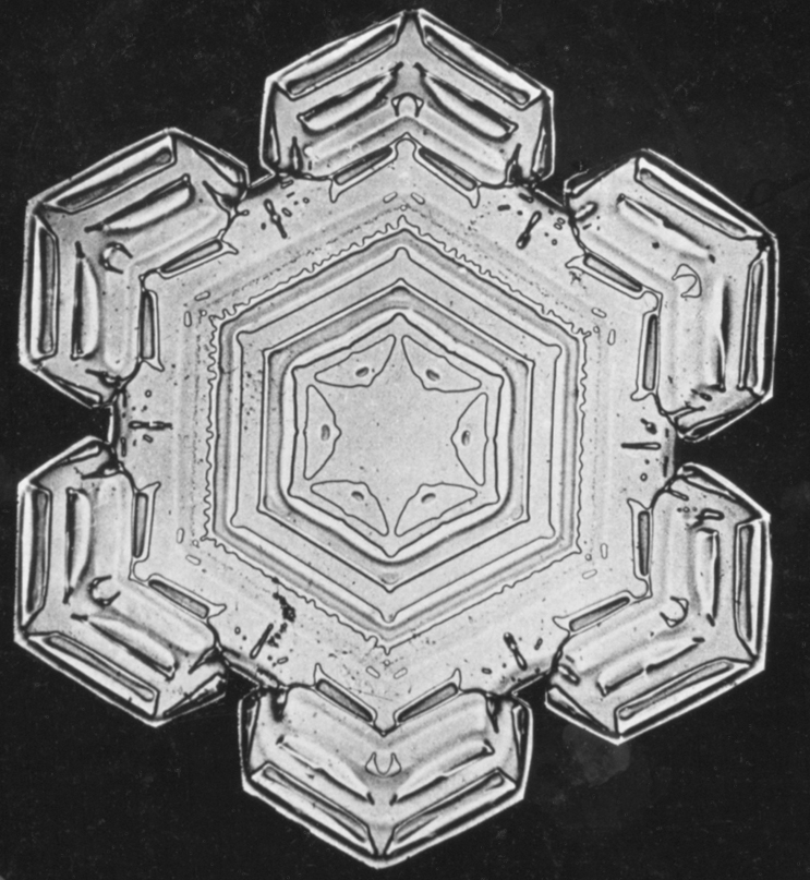 Snowflake Study, between 1890-1903, by Wilson A. Bentley, Smithsonian Institution Archives, Image ID# RU 31 Box 12 Folder 17 (32-a).