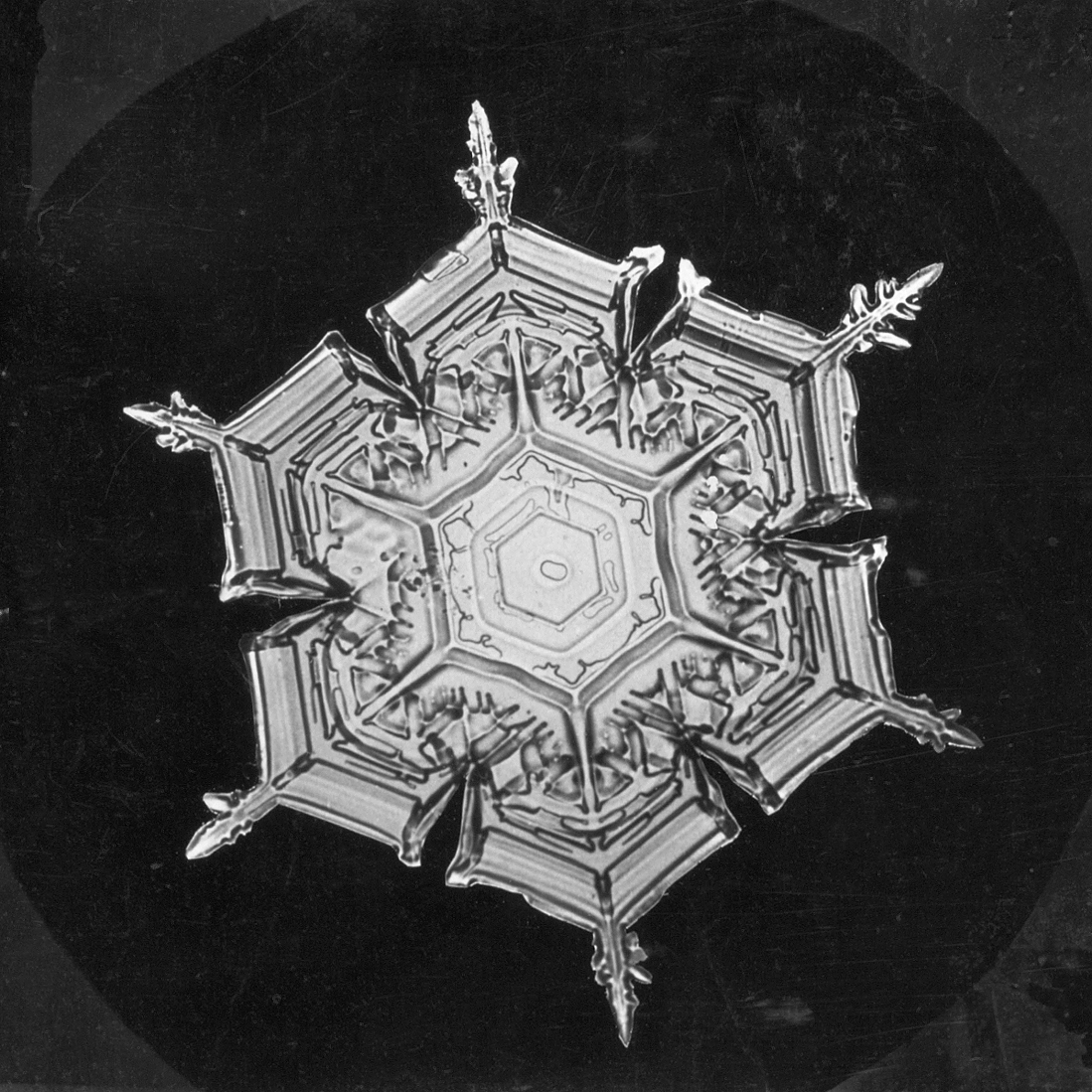 Snowflake Study, between 1890-1903, by Wilson A. Bentley, Smithsonian Institution Archives, Image ID# RU 31 Box 12 Folder 17 (32-e).