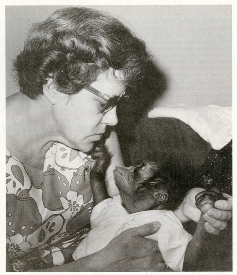 Orangutan Manis and her substitute mother, Louis Gallagher, by Mary Krug, in The Smithsonian Torch, No. 6, June 1969, Smithsonian Institution Archives, record unit 371, box 1.