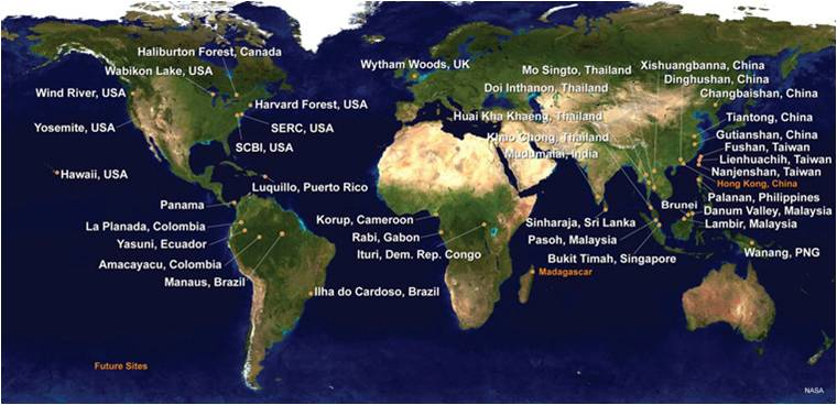 A worldwide map of the Center for Tropical Forest Science's (CTFS) multi-institutional network.