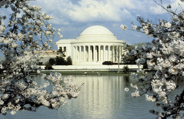 Jefferson Memorial Cherry Blossoms at the Tidal Basin, 1983, by Jeff Tinsley, Color slide, Smithsoni