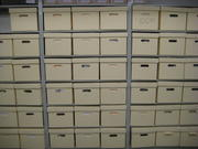 Almost 100 cubic feet of records transferred from the National Museum of Natural History offices.