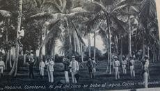 Postcard from Cuba. Record Unit 9560 - Oral history interview with George C. Wheeler, 1989, Smithsonian Institution Archives.