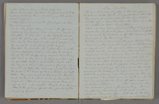 Excerpts from Mary Henrys diary, November 11, 1861 to January 1, 1862, Smithsonian Institution Archives, Record Unit 7001, Box 51, Folder: 3.
