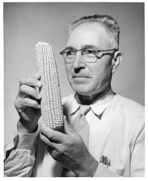 Merle T. Jenkins holding an ear of corn, Smithsonian Institution Archives, Accession 90-105, Neg no. SIA2008-4389.