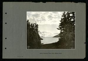 Head of Harriman Fiord, Prince William Sound.