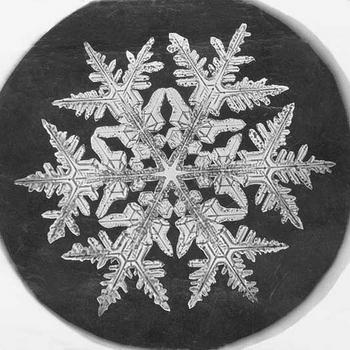 Snowflake Study, 1890, by Wilson A. Bentley, Smithsonian Institution Archives, Record Unit 31, Box 1