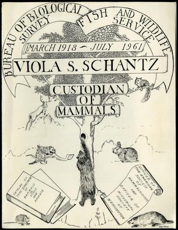 Front of folder for Viola S. Schantz, Color Document, Record Unit 7288 - Viola Shelly Shantz Collection, 1961-1962 and undated, Smithsonian Institution Archives, Neg. no. SIA2013-03074.