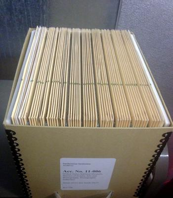 Box of rehoused glass plate negatives, 2013.