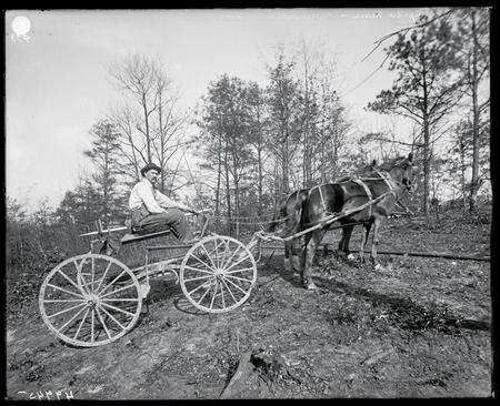 """The Torpedo Man"" transports nitroglycerine on a horse-drawn cart."