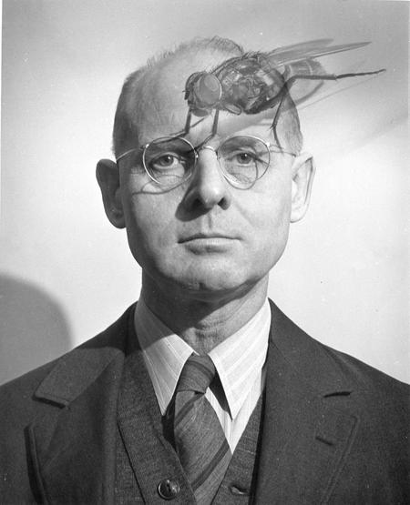Science Service biology editor Frank Thone (1891-1949), mid-1940s, by Fremont Davis.