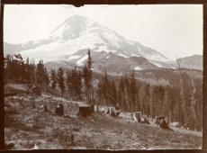 Mt. Hood, Oregon, 1898. Record Unit 7417 - Florence Merriam Bailey Papers, 1865-1942, Smithsonian Institution Archives.