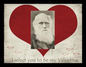 """""""I Select You to be My Valentine"""" - Charles Robert Darwin, by Herbert Rose Barrard, Smithsonian Institution Archives, neg. no. SIA2008-0861."""