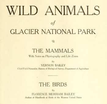 Wild animals of Glacier National Park, 1918. Vernon and Florence Merriam Bailey. Courtesy of Biodiversity Heritage Library.