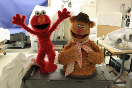 Elmo and Fozzie Bear wait in the conservation lab before their debut at the donation ceremony. Court