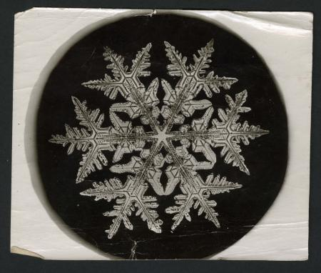 "Winter's arrival brings the annual increase of requests for photos by Wilson A. ""Snowflake"" Bentley (Record Unit 31 - Office of the Secretary, Correspondence, 1866-1906), Smithsonian Institution Archives, Neg. No. SIA2013-9128."