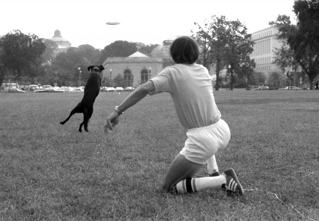 National Air and Space Museum Frisbee Day, September 4, 1977, by Richard Hofmeister, Accession 11-009, Smithsonian Photographic Services, Photographic Collection, 1971-2006, Smithsonian Institution Archives, neg. no. 77-12431-34A.