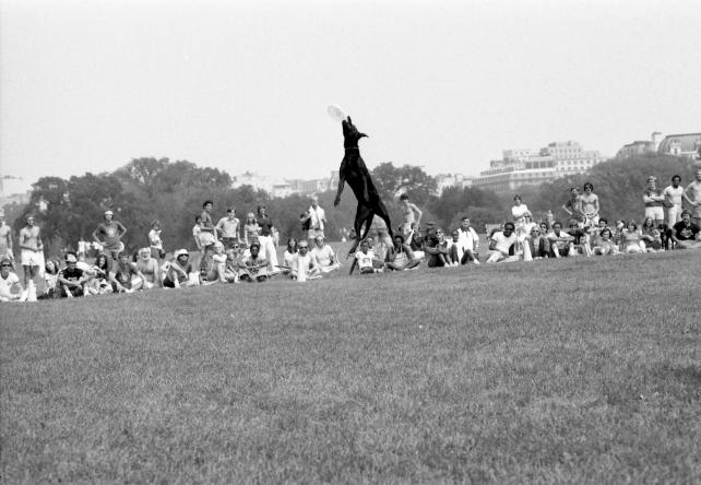 2nd annual Frisbee Festival at the Washington Monument, September 3, 1978, by Lee Stalsworth, Accession 11-009, Smithsonian Photographic Services, Photographic Collection, 1971-2006, Smithsonian Institution Archives, neg. no. 78-13940-28A.
