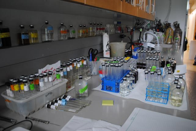 One of the new laboratories in the Charles McC. Mathias Laboratory. Photo by Kira Sobers, September 12, 2015.