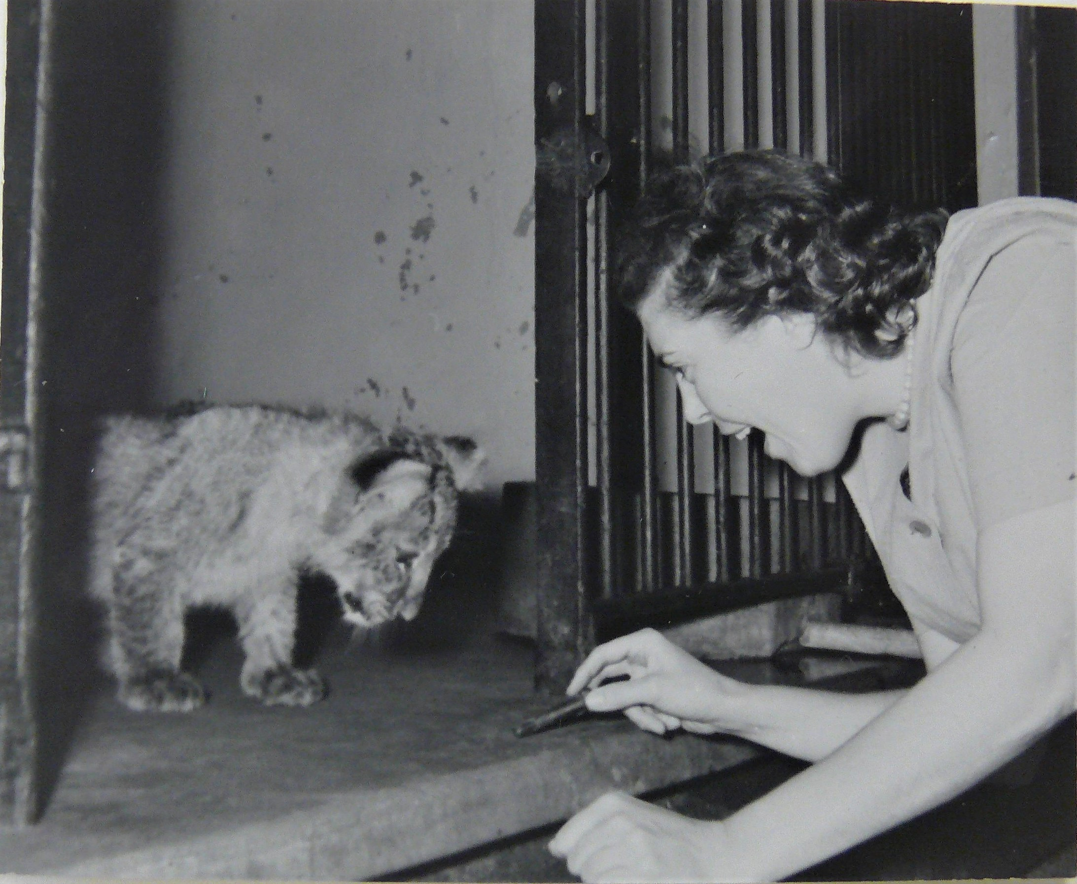 Crimilda is leaning forward, clasping a small object in her hand in front of a small lion cub in an