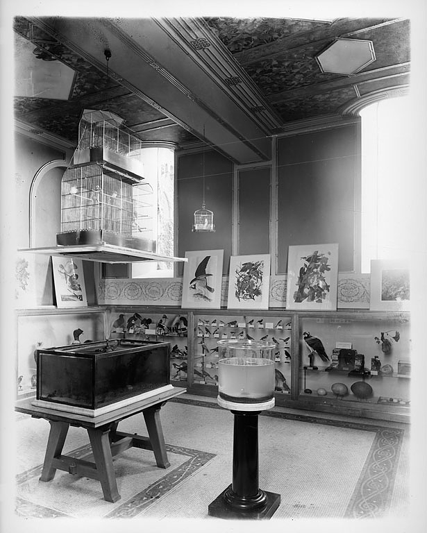 Children's Room in the South Tower, 1901. Smithsonian Institution Archives, Image ID:  2002-12158.