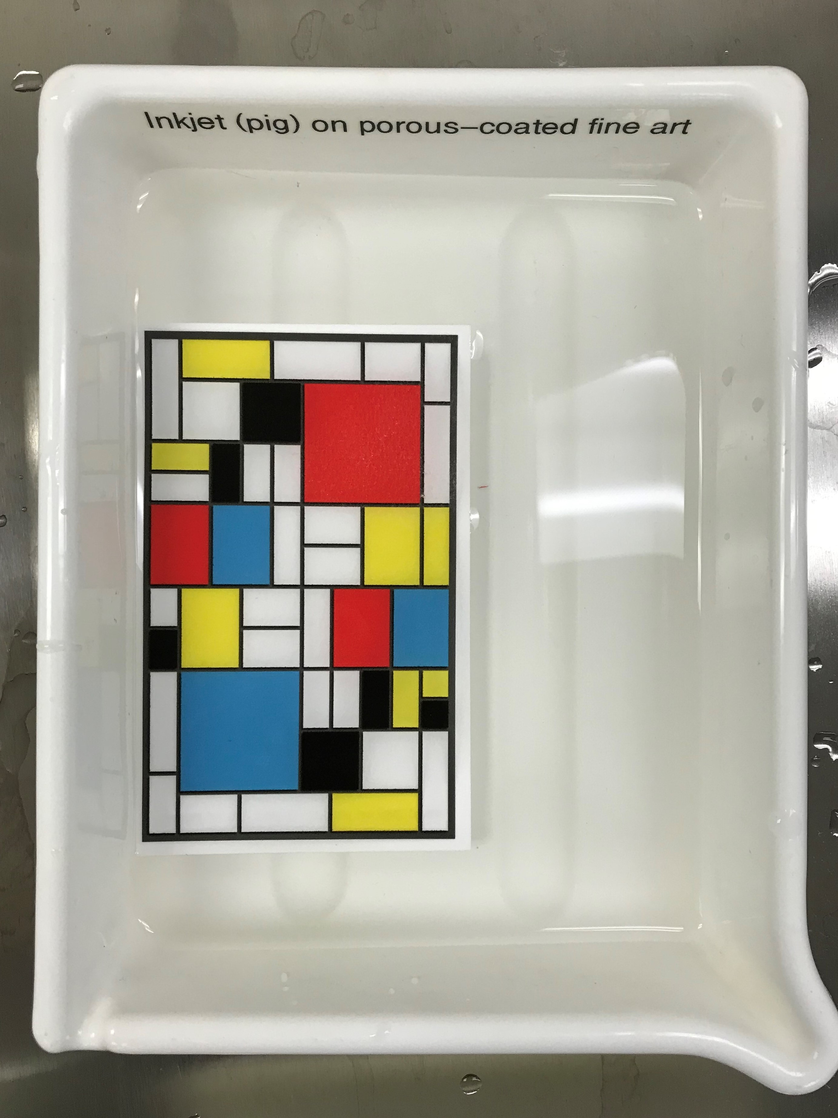 The print is underwater. The colors include: yellow, white, black, red, and blue. It is labeled: Ink