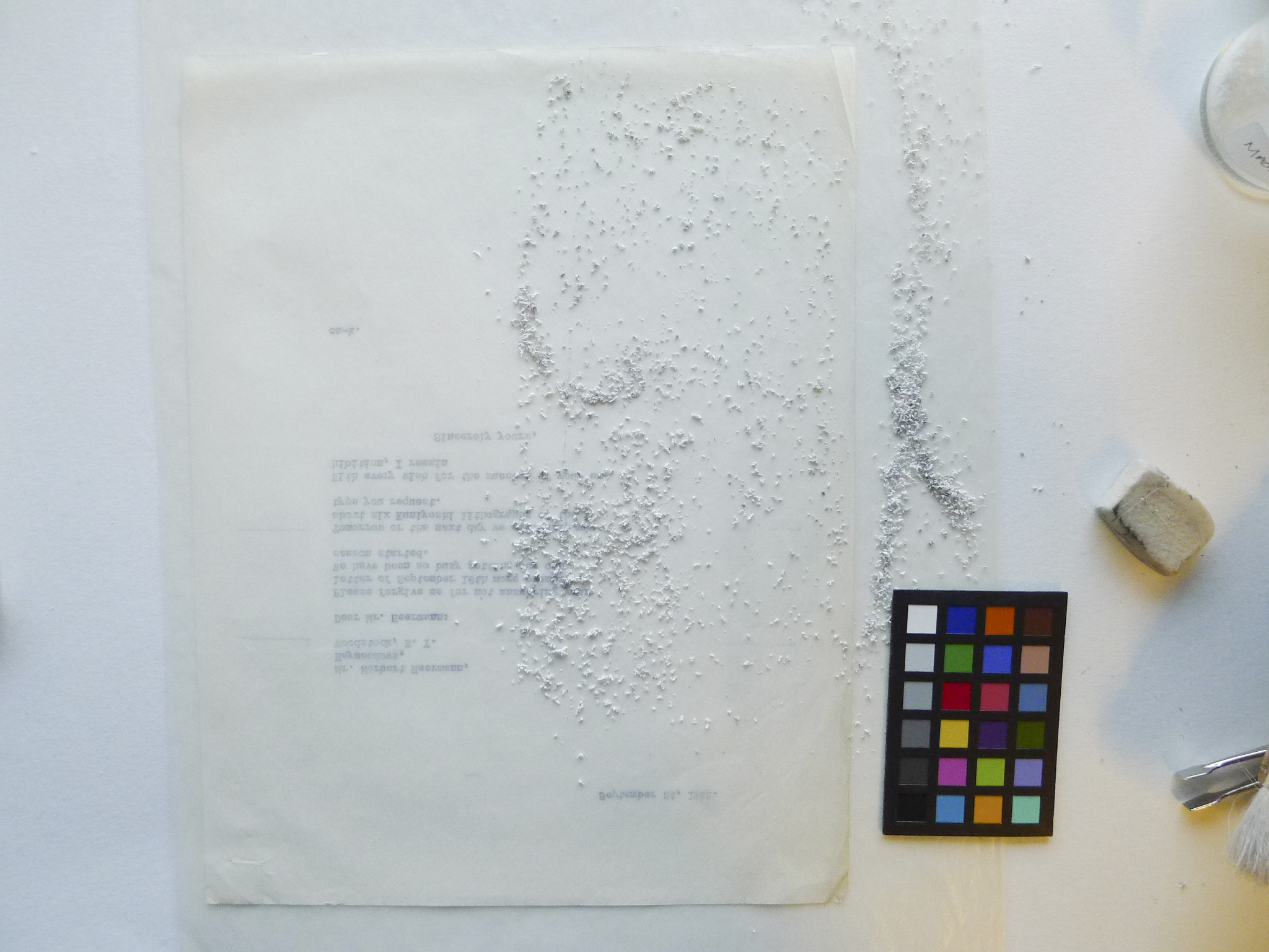 White crumbs on typewritten page