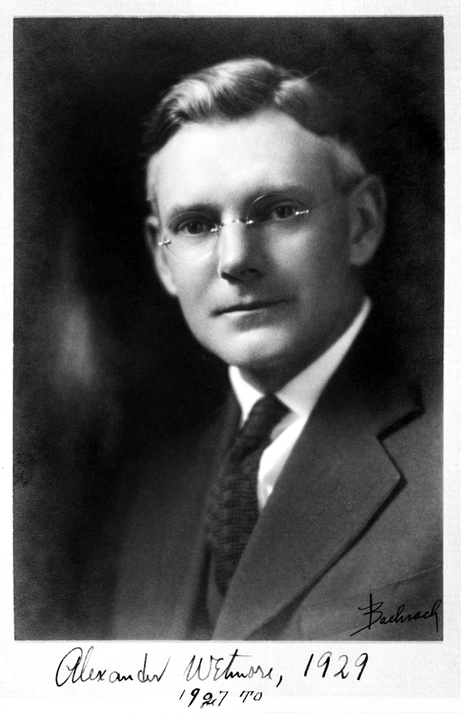 Alexander Wetmore, ornithologist and sixth Secretary of the Smithsonian Institution (1944-1952). Smithsonian Institution Archives, Record Unit 95, Box 24, Folder 33.