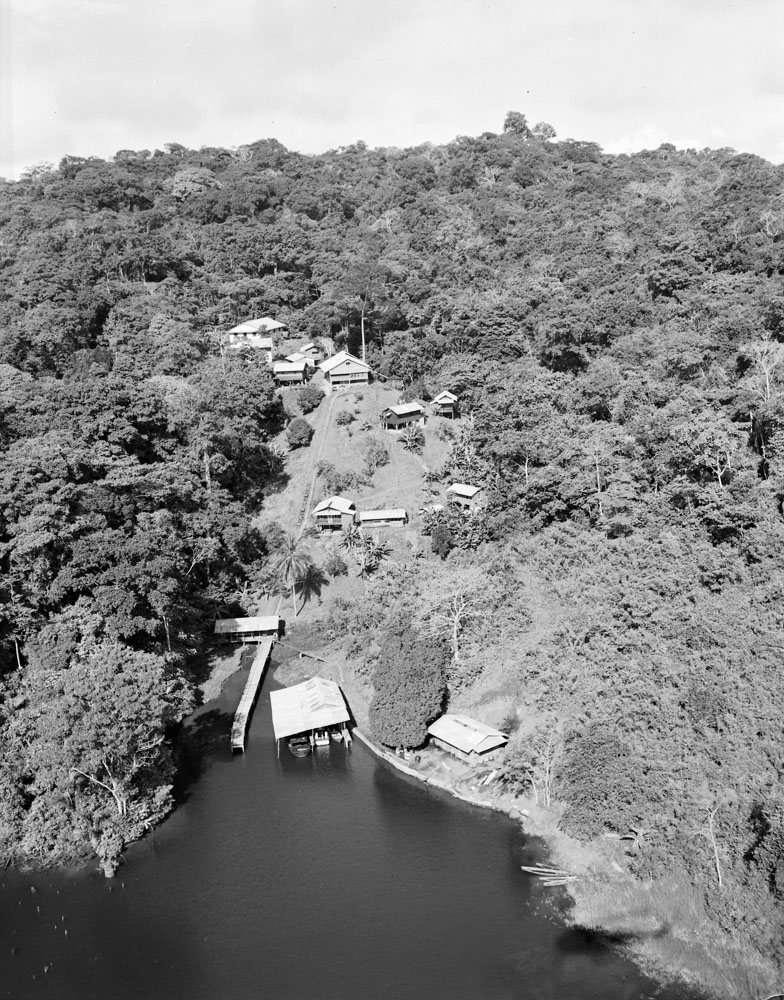 Aerial view of the Barro Colorado Island laboratory of the Canal Zone Biological Area located on Gatun Lake in the Panama Canal watershed in Panama. Smithsonian Institution Archives, Record Unit 134, Box 12, Folder 6.