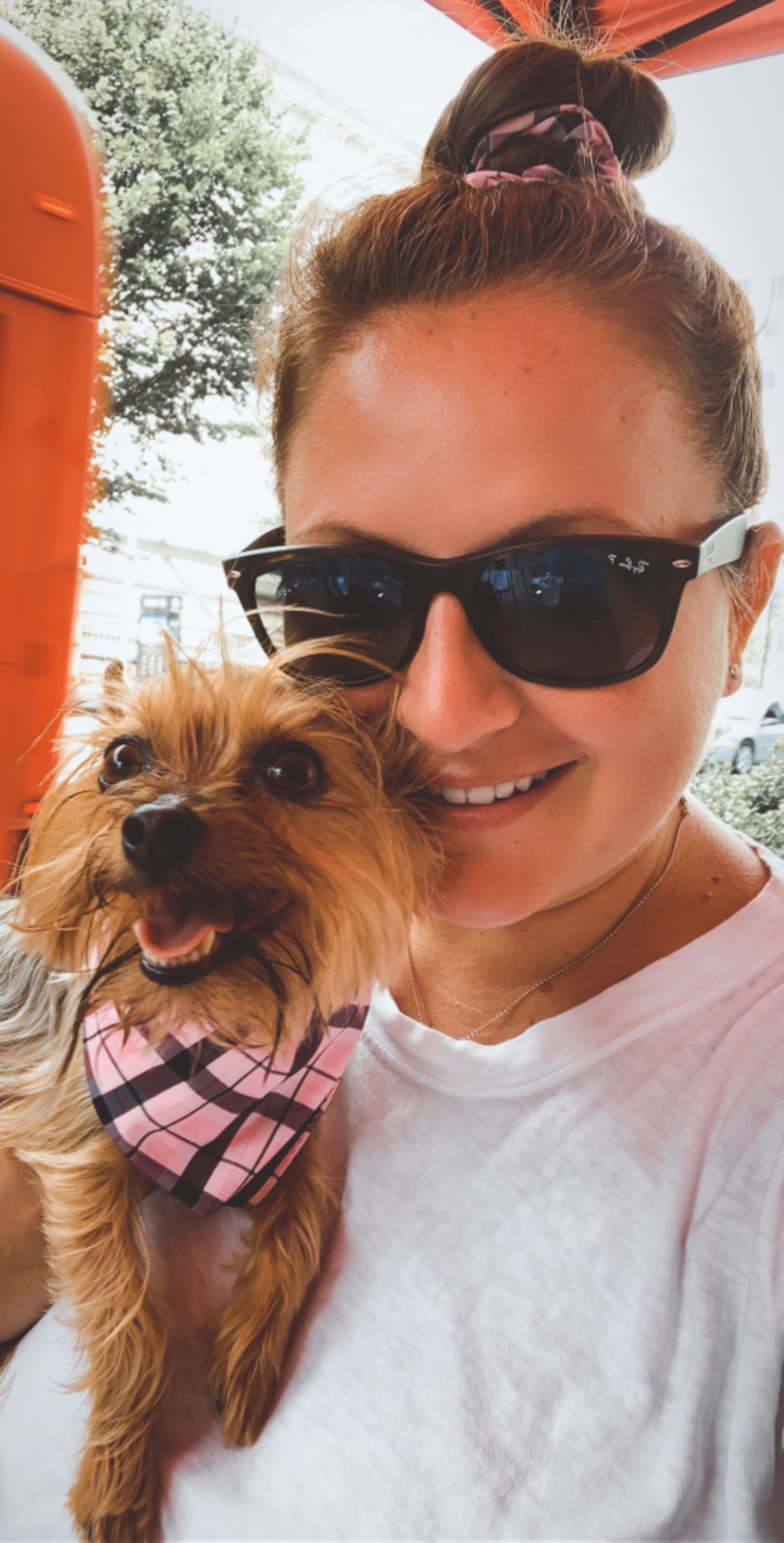 Person with sunglasses holding dog.