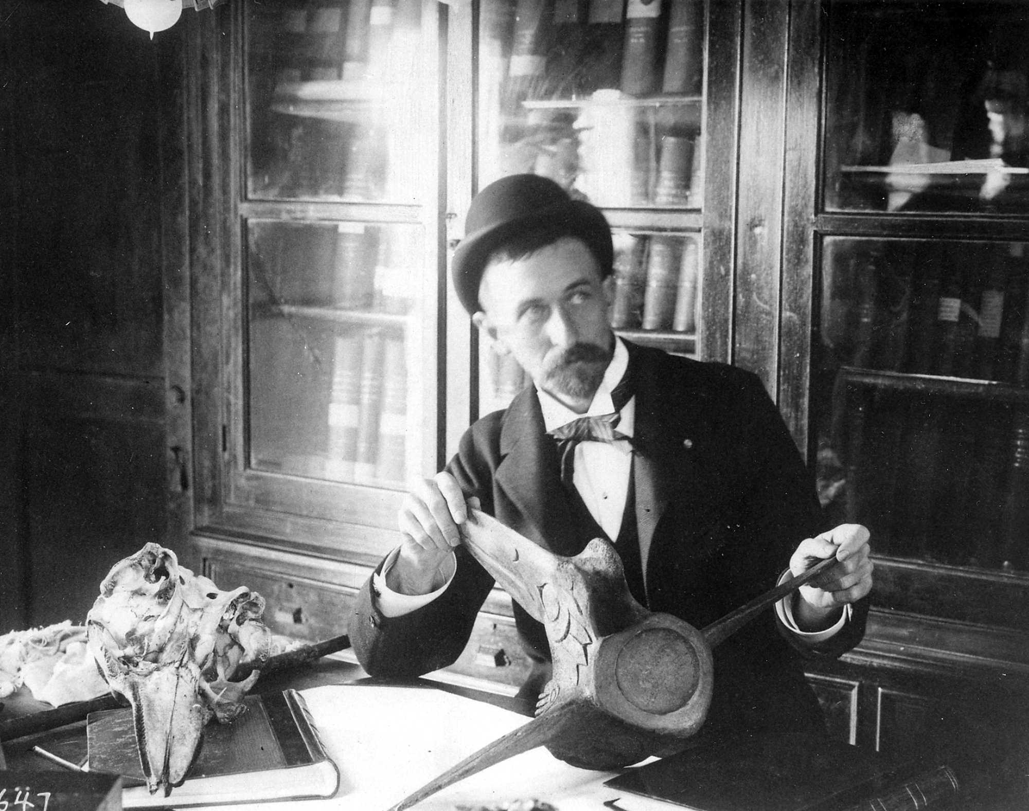 Frederick W. True, mammologist at the US National Museum, working with specimens, circa 1880s.