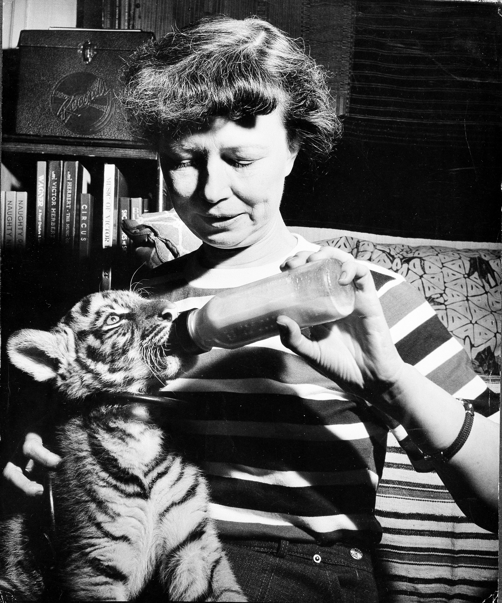 Lucile Quarry Mann Feeding Tiger Cub