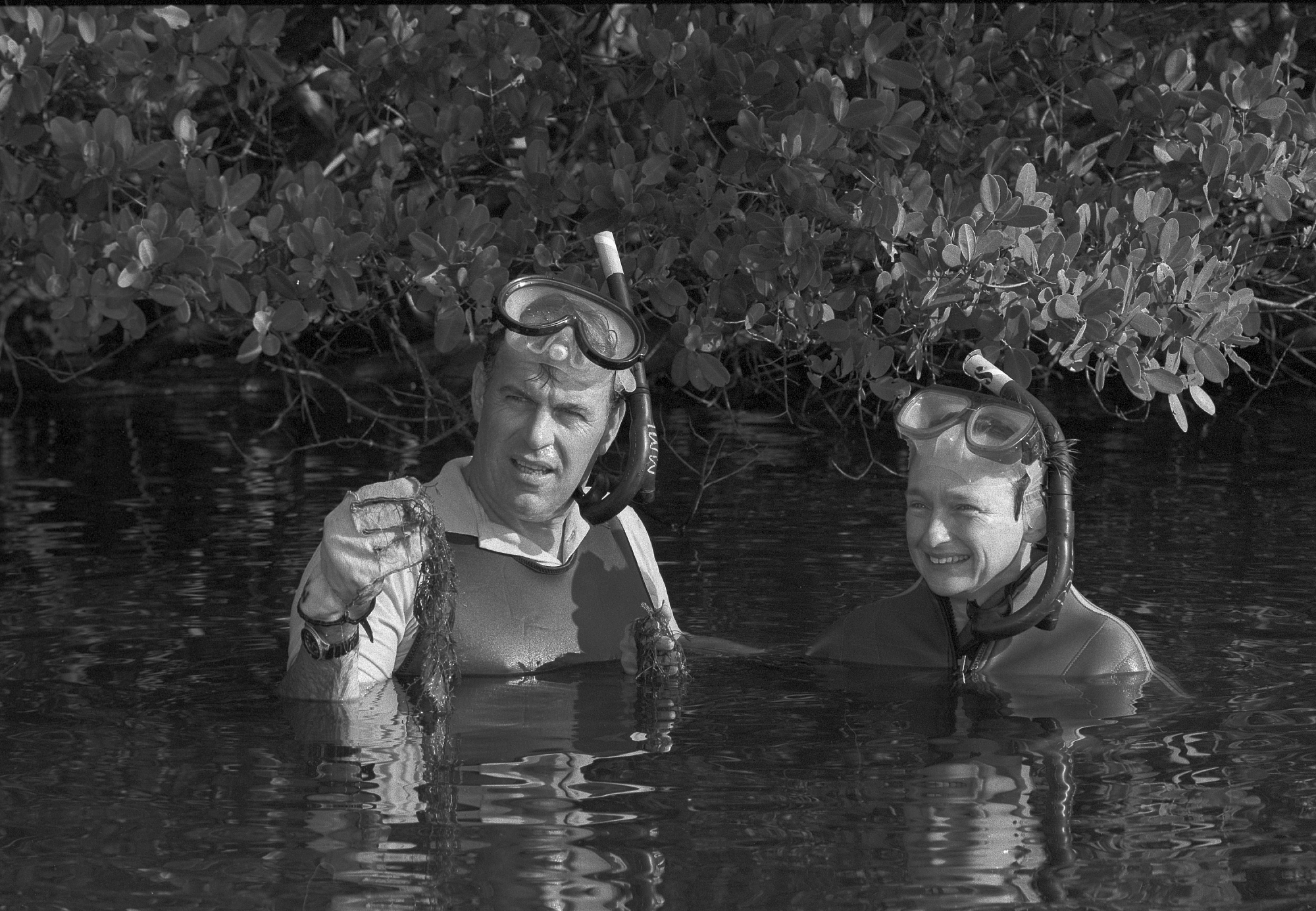 Diane and Mark Littler in snorkeling gear doing algae research at the Smithsonian Marine Station at