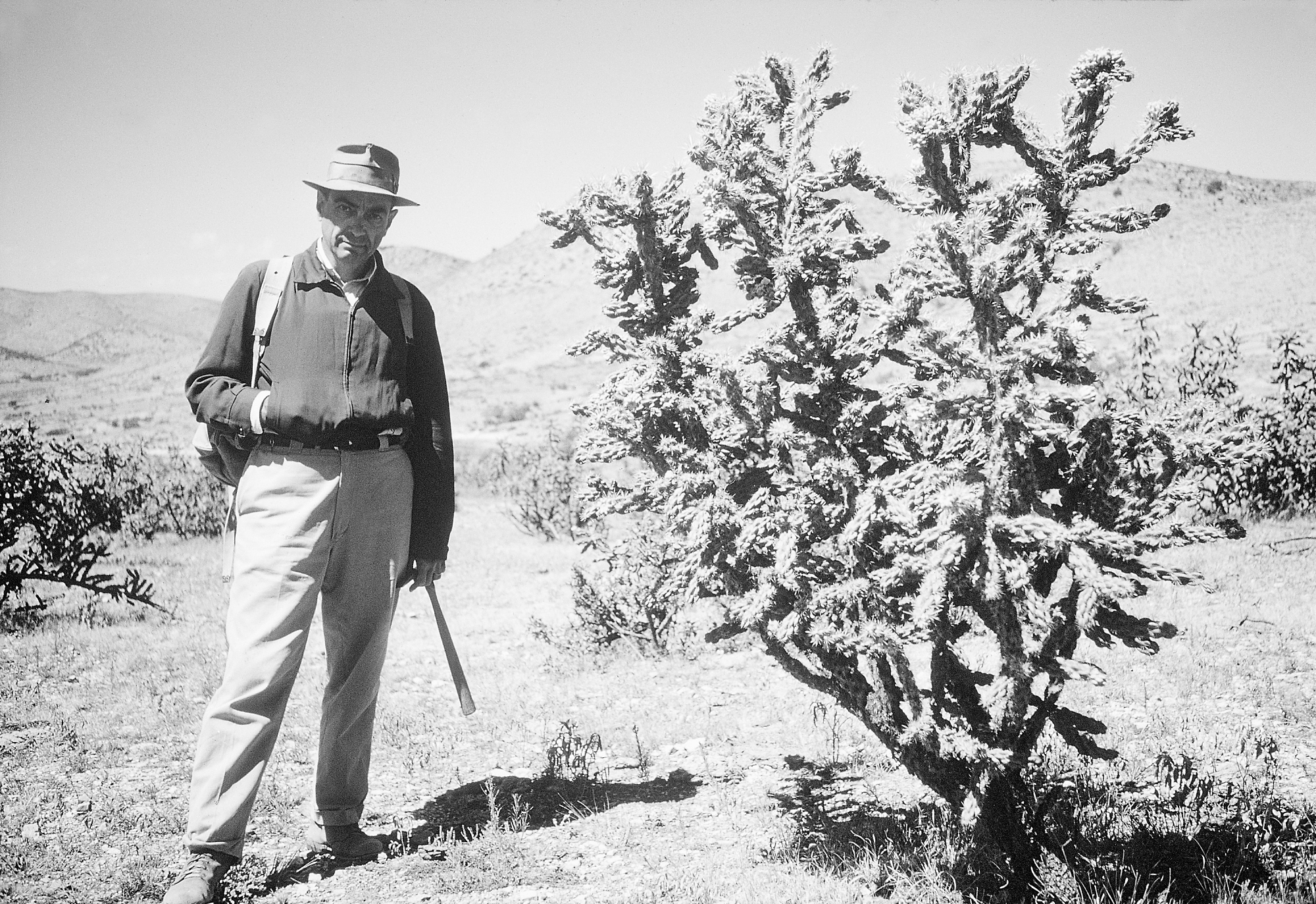 Paleobiologist G. Arthur Cooper conducting filed work at Glass Mountains, Texas, 1957.