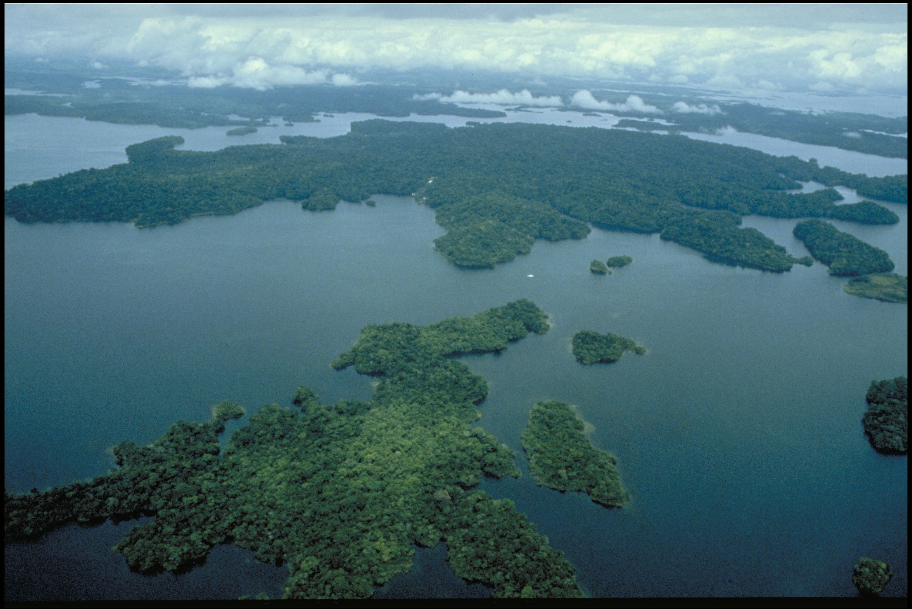 Aerial view of a body of water and forested islands.