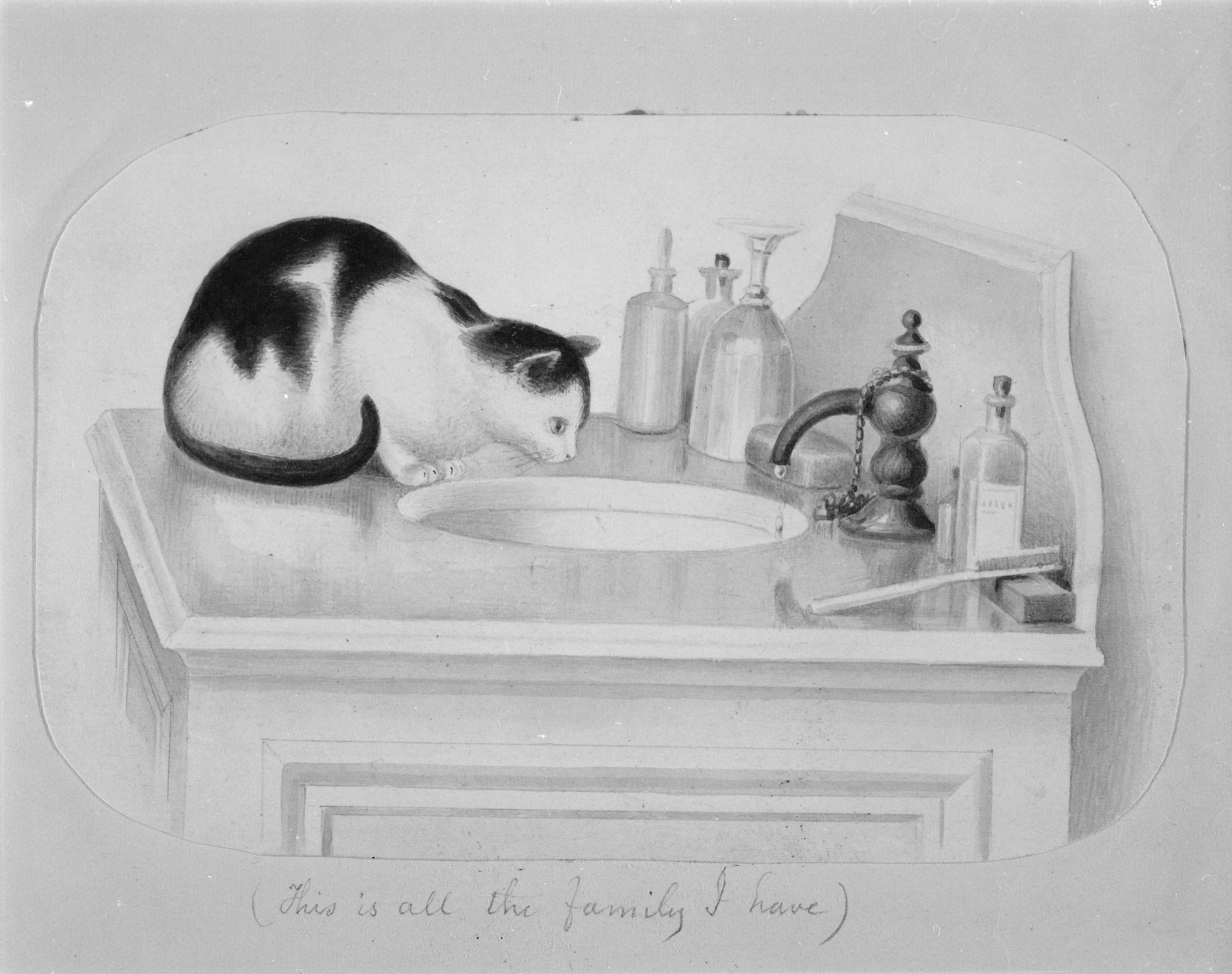 B&W image of a sketch of a white cat with black spots sitting on sink counter looking into a sin