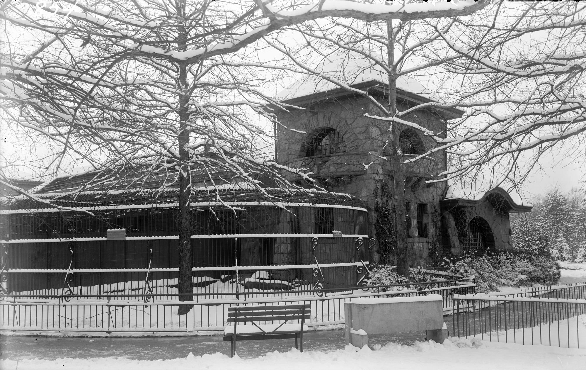 The Lion House at the National Zoological Park covered in snow, 1913.
