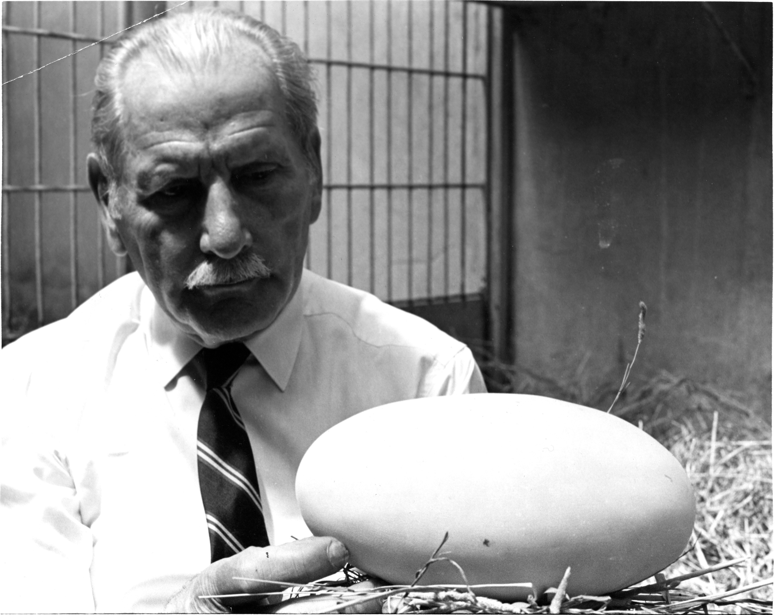 Jonas holds up a large egg, bigger than his face, toward the camera.