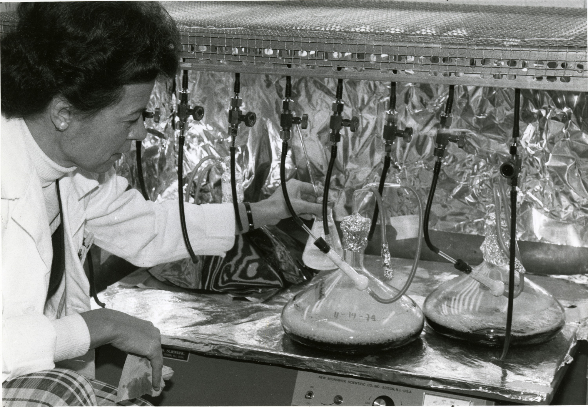 Elizabeth Gantt, a biologist at the Smithsonian's Radiation Biology Laboratory, studying algae, 1979