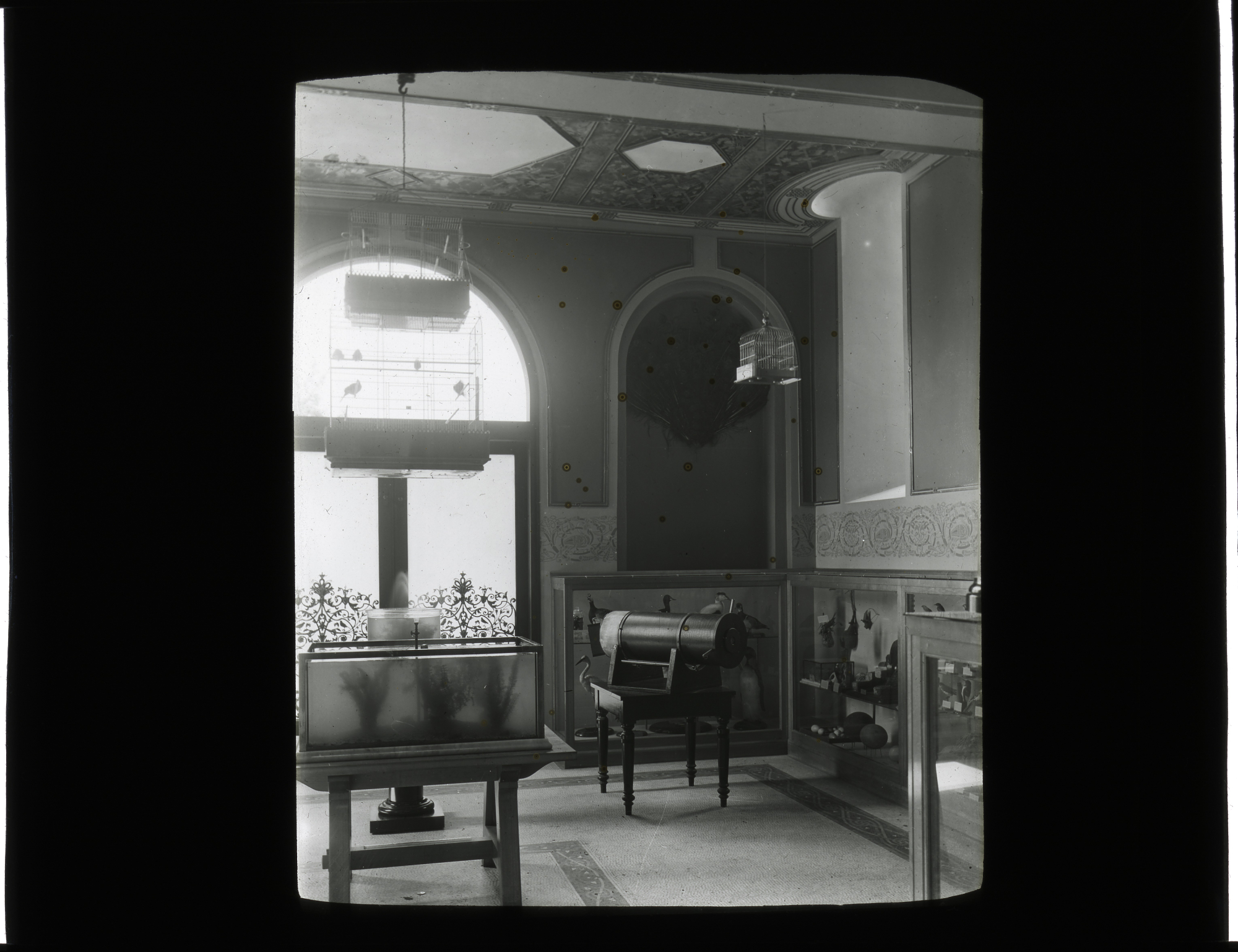 Children's Room in the Smithsonian Institution Building, or Castle, 1901. Smithsonian Institution Ar