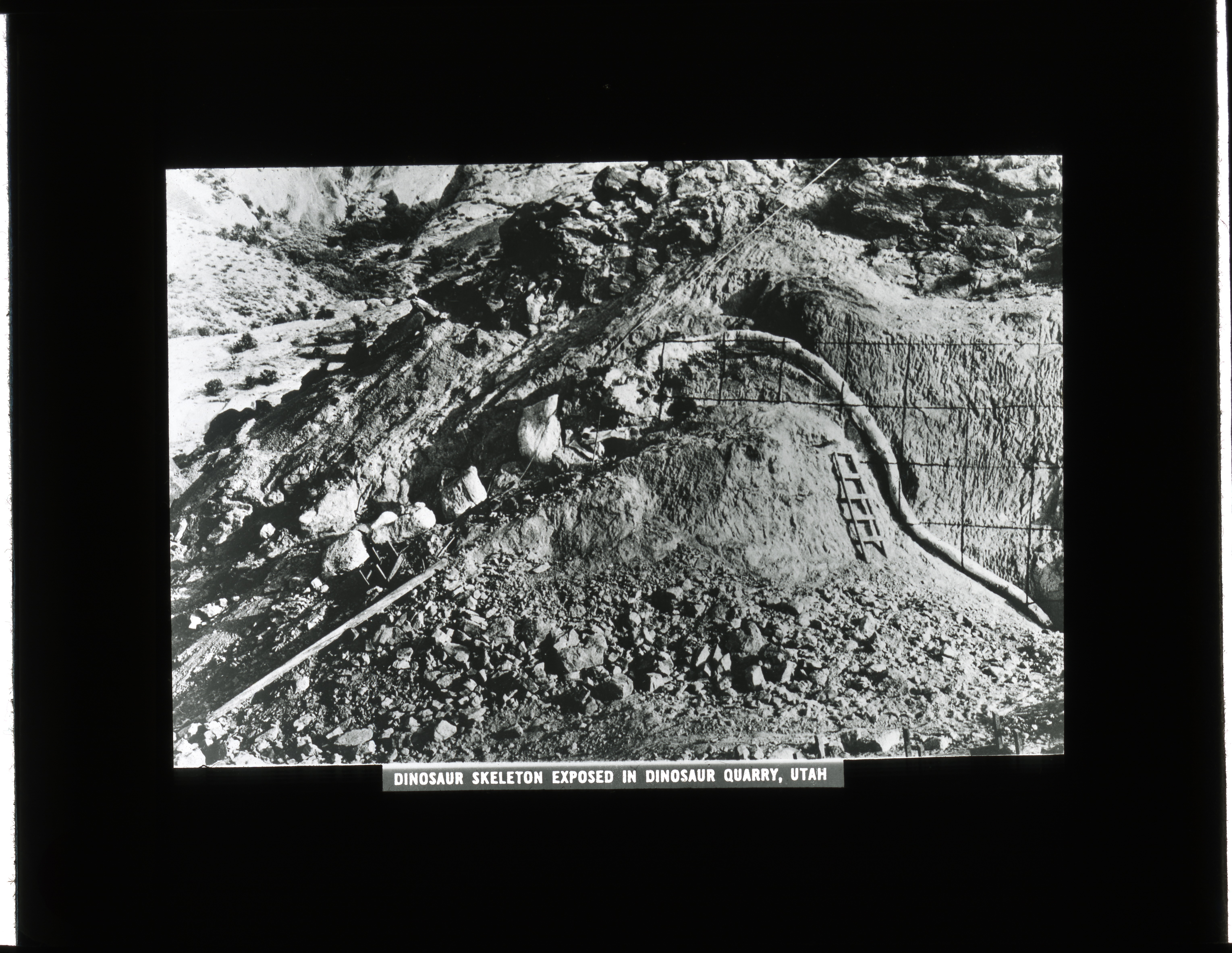 "Slide of a rock formation with the label ""Dinosaur Skeleton Exposed in Dinosaur Quarry, Utah."