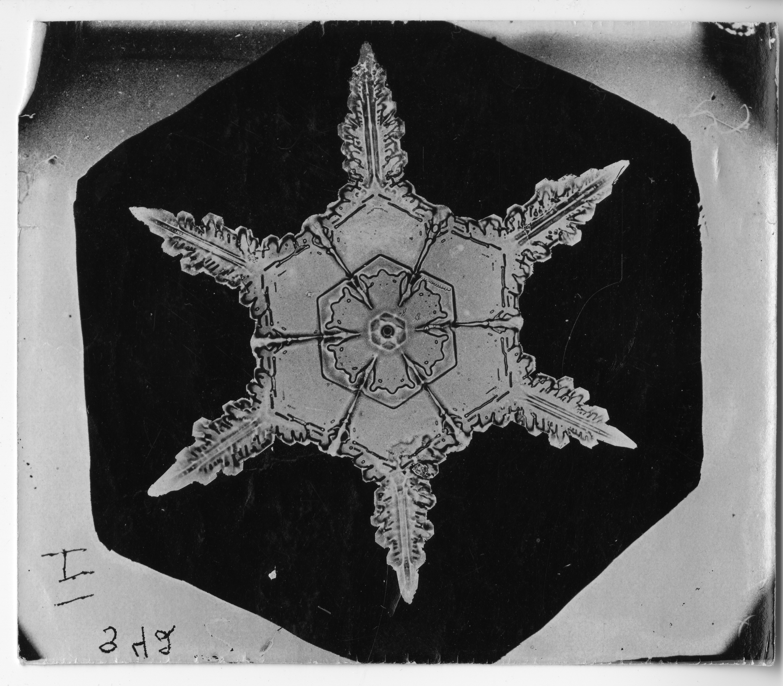 Original of the snowflake with six points.