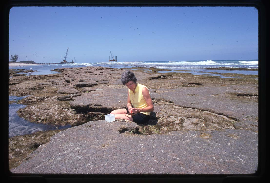 Mary Rice sits on a rock examining something, not visible in her hands. The rocks are located near a