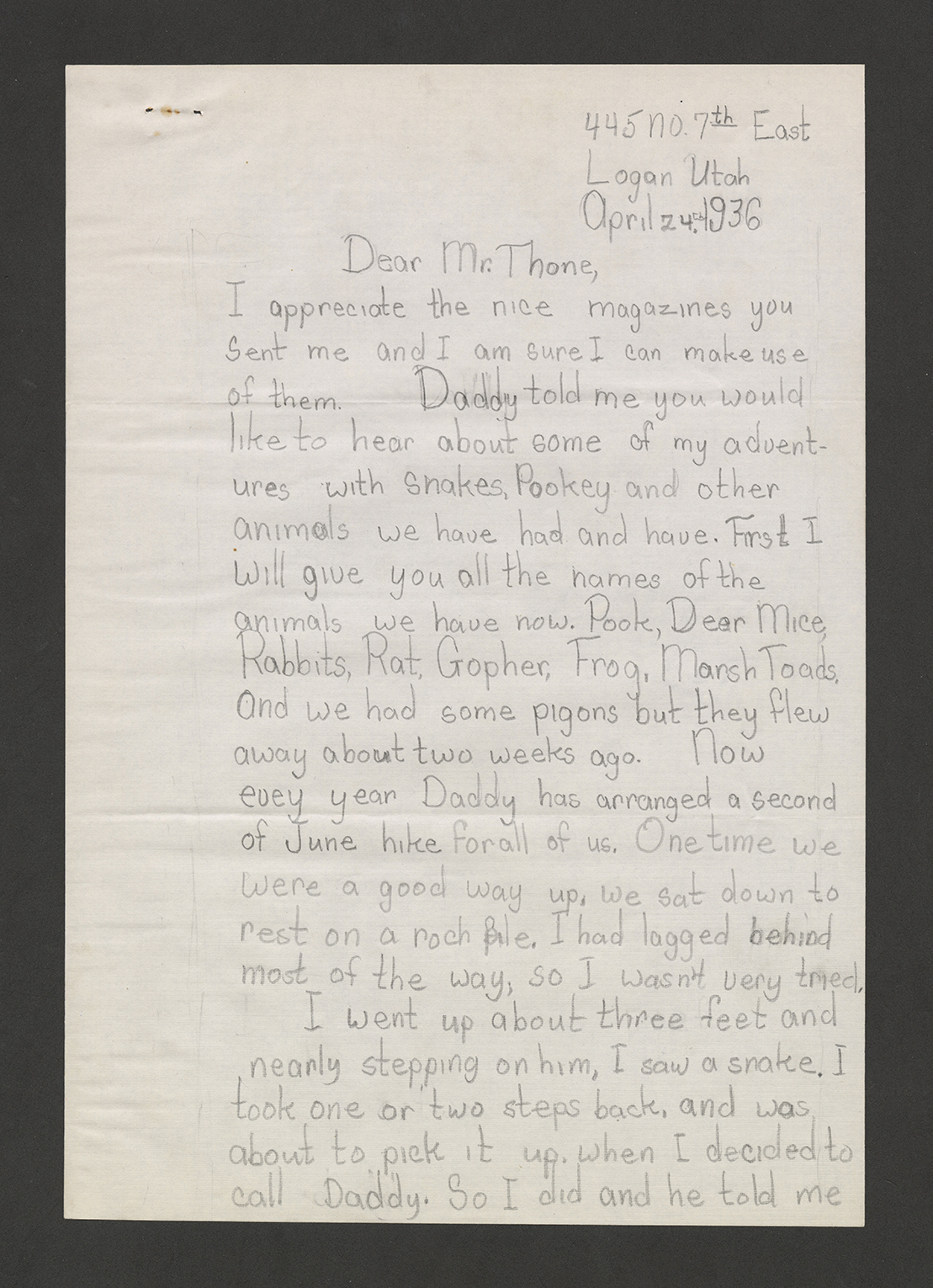 Handwritten letter from Elaine Stanford to Frank Thone about Stanford's pet porcupine.